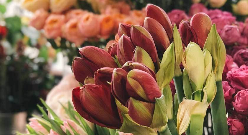 Composizioni e addobbi di fiori freschi